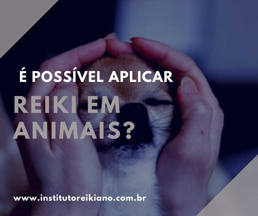 reiki veterinário