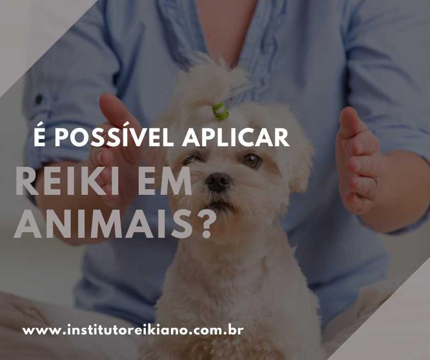 reiki em animais