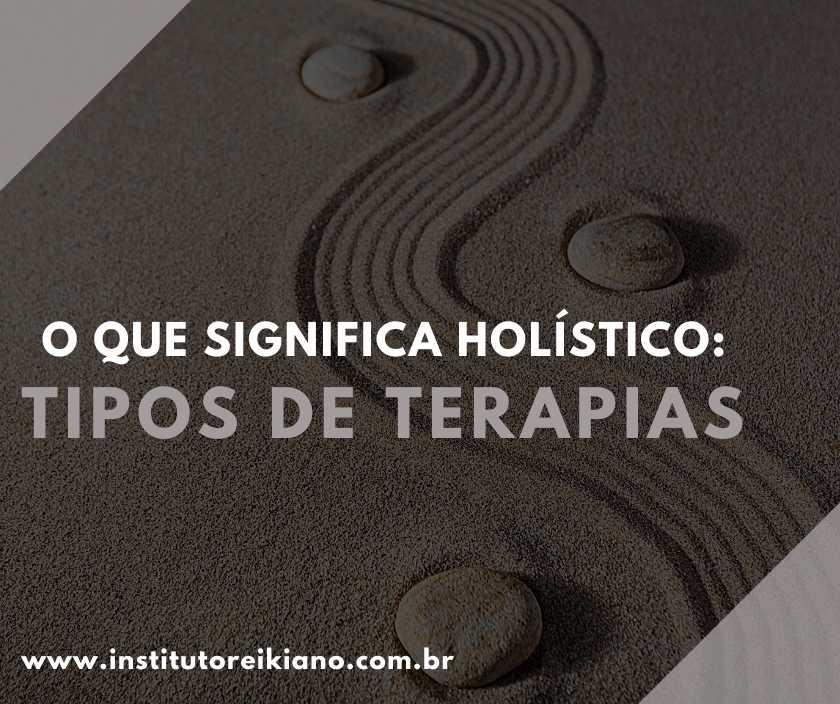 significado de holístico