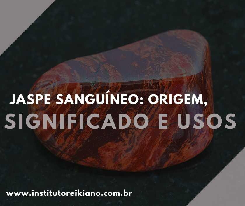 Muitas pessoas aprovam o uso de pedras e minerais para melhorar aspectos das suas vidas. Então, confira as origens e usos do jaspe sanguíneo.